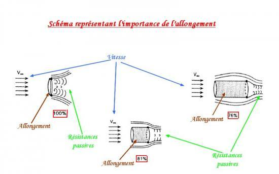 schéma allongement