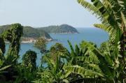 Passage dans la jungle des îles Perhentian