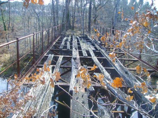 Pont sur la Leyre_2