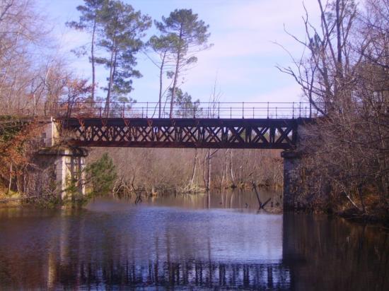 Pont sur la Leyre_3