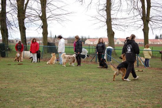 club canin frignicourt