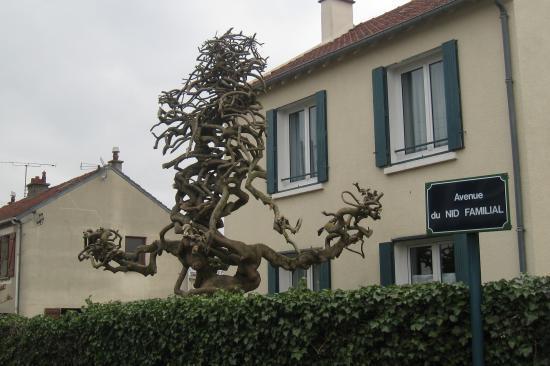 Drôle d'arbre à Beaumont