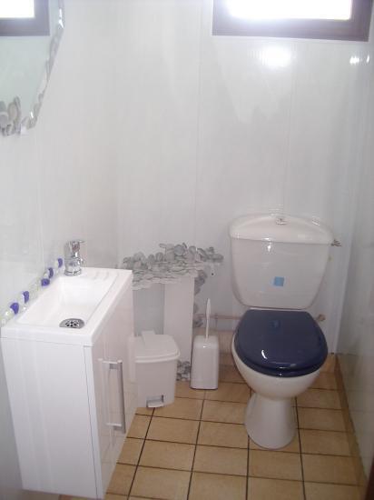 La salle de bains et le wc for Salle de bain avec wc separe