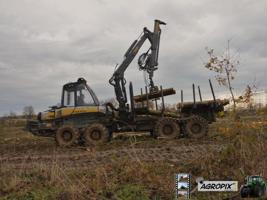 chantier forestier avec ponsse buffalo