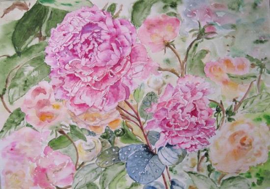 Roses de damas