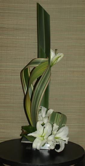 art floral saison 2009 2010. Black Bedroom Furniture Sets. Home Design Ideas