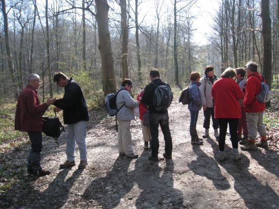 Pause de randonneurs en forêt