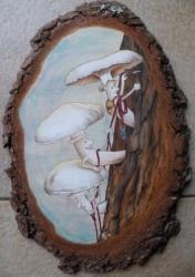 champignons grimpeurs...