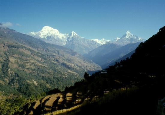 L'Annapurna Sud, le Hiunchuli et le Machhapuchhre depuis Deurali