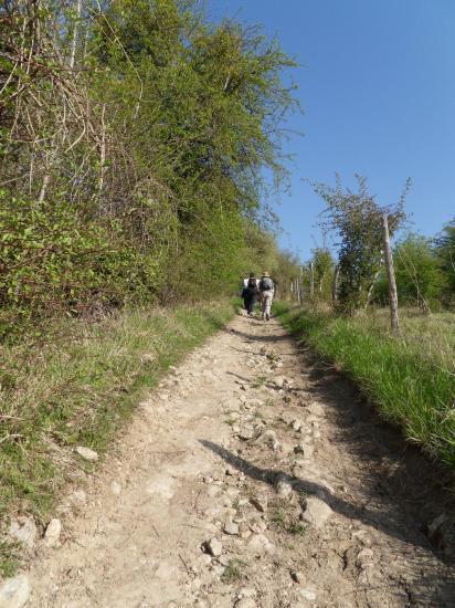 GR 2 de Vétheuil vers la Roche Guyon