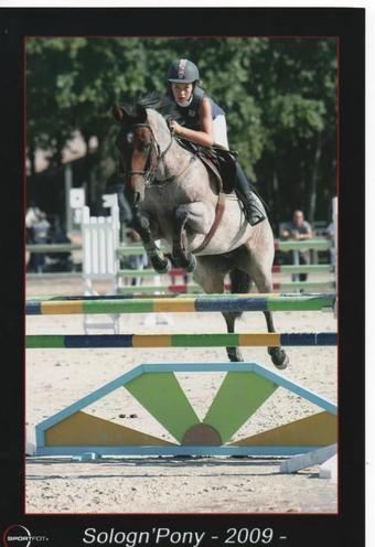 sologn pony 2009 D1P