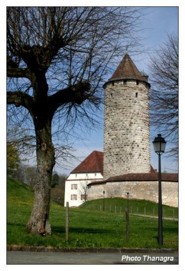 La tour du château.jpeg