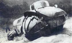 Rhino of Elie  P. Aghnides