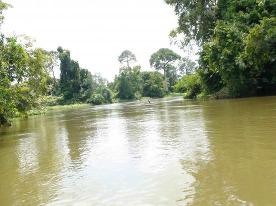 belle vue du fleuve bandama
