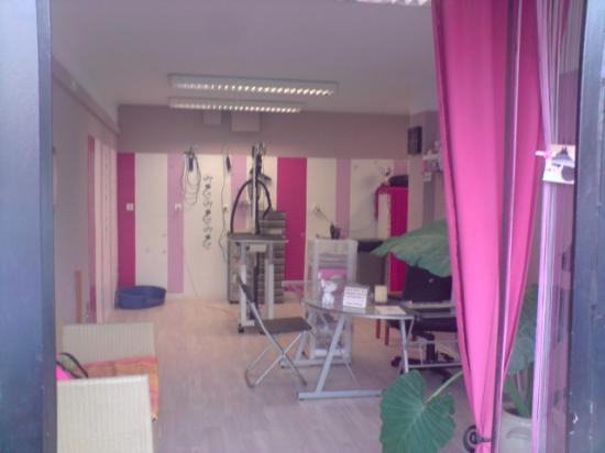 Salon de toilettage le cadix for Salon de toilettage paris