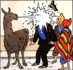 Tintin et le temple du soleil, ca vous rappelle quelque chose?