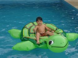 Mi pequeño amigo fernando y su tortuga - Macas