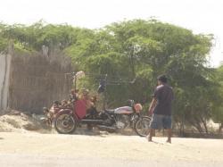 Como se transportan las cabras en Peru... - Piura