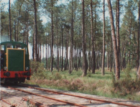 1991 Luë_9