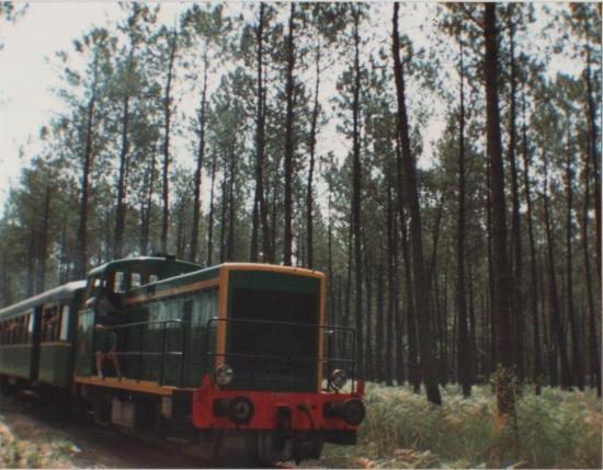 1991 Luë_8