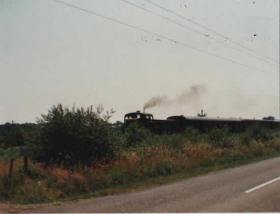 1991 Bourricos_1