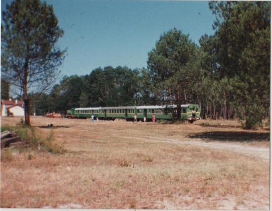 1991 Luë_3