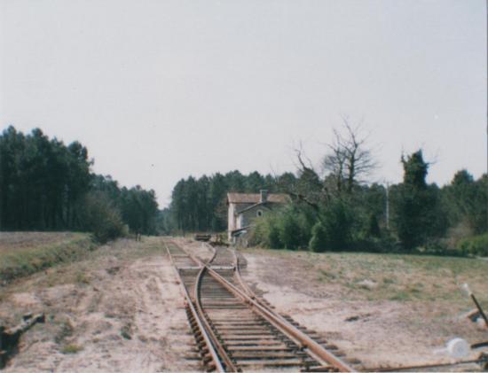 2003_5 Lesgor
