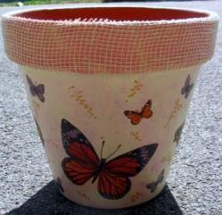 Pot papillons