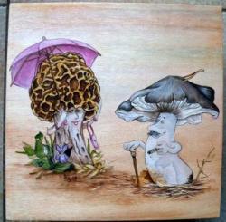 boïte carrée - champignons