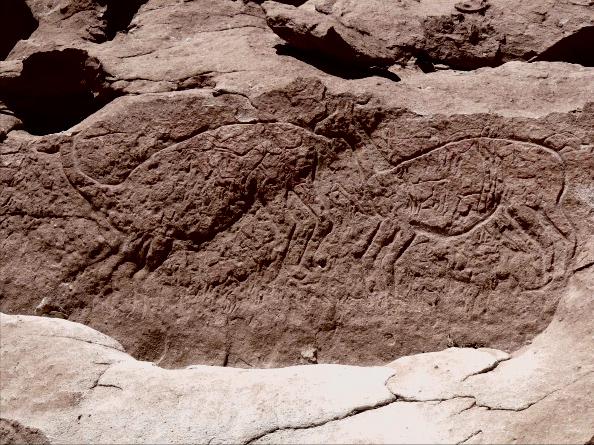 Pétroglyphes de Yerbas Buenas