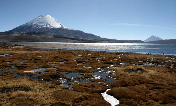Lac Chungara (4 500 m)