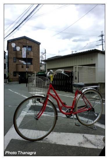 Un vélo solitaire.jpeg