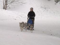 Corinne en 4 chiens