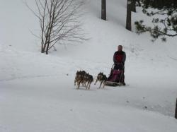 Christian en 4 chiens