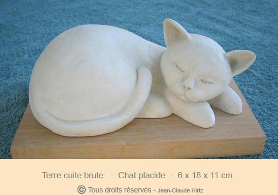 Chat placide